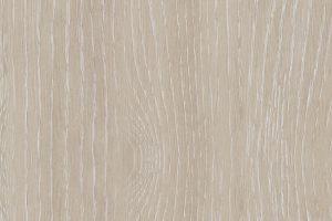 sibirian-oak